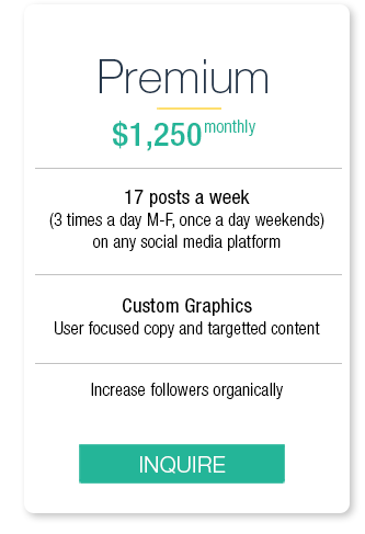 premium, services, monthly, 1250, post, per, week, social, media, custom, graphics